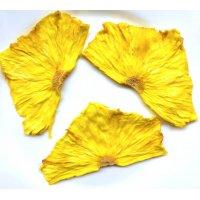 Сублимированные фрукты: ананас